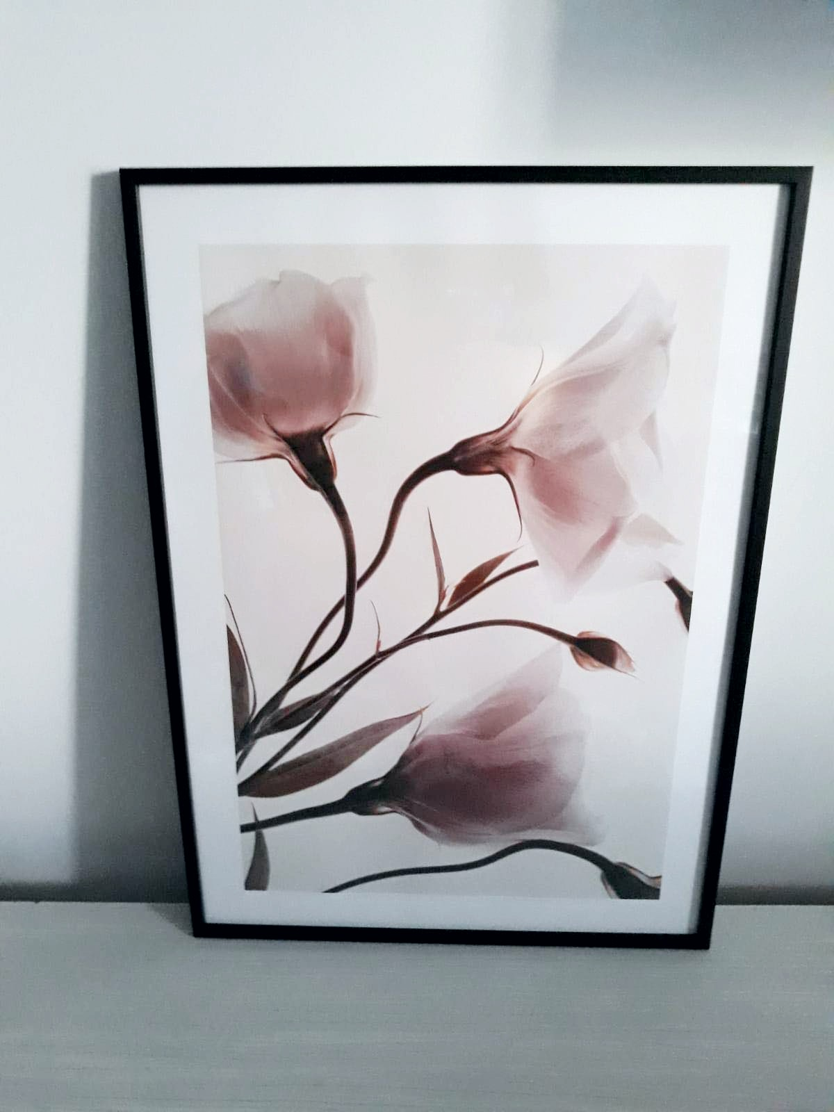 poster cu magnolie